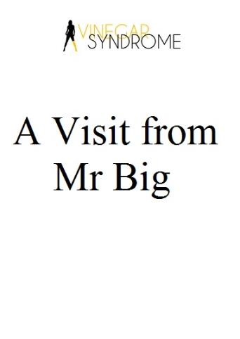 A Visit From Mr Big from Vinegar Syndrome front cover