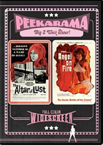 Angel On Fire from Vinegar Syndrome back cover